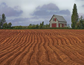This farm with it's recently furrowed fields sits on the edge of Georgetown.