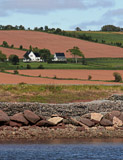 A beautiful farm in Prince Edward Island enjoys the bounty of both land and water.
