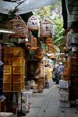 As we walk to Hong Kong Harbor we come across the busy bird market.