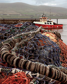 The boats sit quietly among piles of nets and ropes on the  fishermen's day of rest.