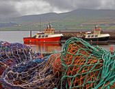Dingle is well known for it's lively pub music and colorful fishing harbor.