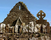Ruins like these in County Carlow tell us of Ireland's early religious history.