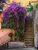There are many steps to  climb as you visit the seaside villages of Cinque Terre.