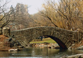 Central Park's lake and stone bridge offer a peaceful refuge in a hectic city.