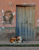 Many posters and grafitti portraits of Che were seen through out Peru.