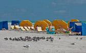 The scene at South Beach, Florida.