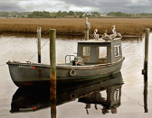 Pelicans relaxing on a oysterman's boat in Apalachacola, FL.